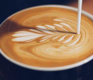 Kaffeprovning - Från böna till fika