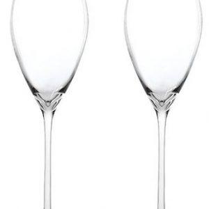 Novo Champagneglas Klar 28 cl 2 pack